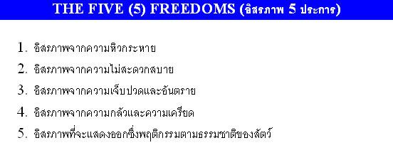 5_Freedom-1